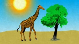 One suspects that the scientific world would not be using the carbon-14...