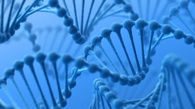 The Human Genome and the Making of a Skeptical Biologist