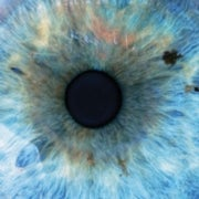 Hidden Organ in Our Eyes Found to Control Circadian Rhythms and Emotions