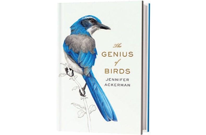 Book Review: <i>The Genius of Birds</i>