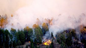 Wildfire Smoke Proves Worse for Global Warming