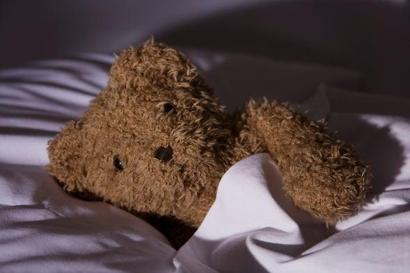 Bear Gut Microbes Help Prep Hibernation