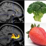 Appetite-Killing Hormone Negates Joy of Eating