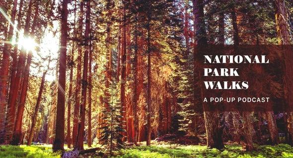 National Park Nature Walks, Episode 1: Rocky Mountains