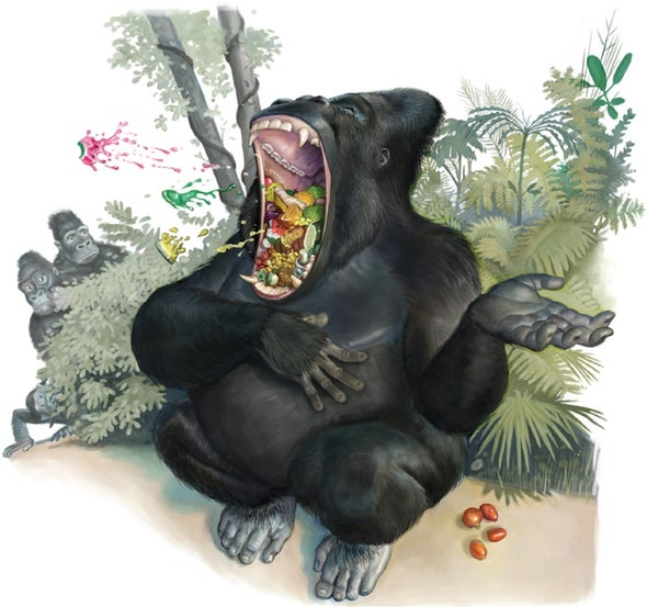 """Gorillas Hum and Sing While They Eat to Say, """"Do Not Disturb"""""""