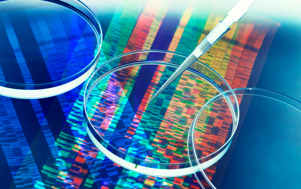 New Human Gene Tally Reignites Debate