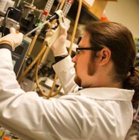 Bacteria and Fungi Together: A Biofuel Dream Team?