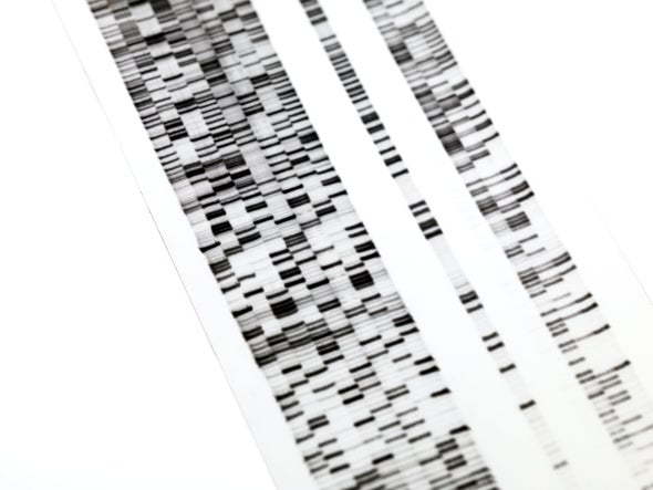The Case of a Woman Who Feels Almost No Pain Leads Scientists to a New Gene Mutation