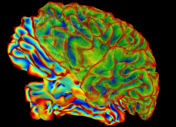 Can We Decipher the Language of the Brain?
