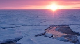 Bigger Storm Waves of Climate Change Bust Up and Melt Sea Ice