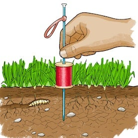 Dirty Science: What Makes Soil Become Dense?