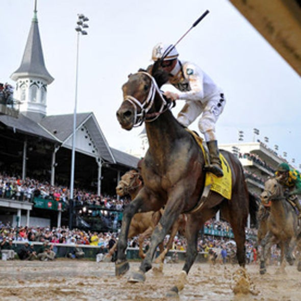 Triple Crown-Bound Horse Breeders Start to Look to Genetics