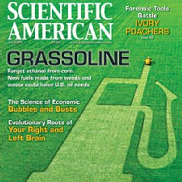 "Readers Respond on ""Grassoline"""