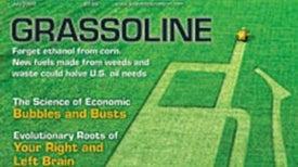 "Readers Respond on ""Grassoline"""