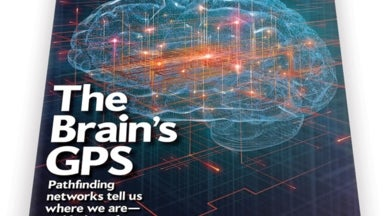 Finding Our Place with the Brain's GPS
