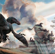 How Birds Evolved from Dinosaurs