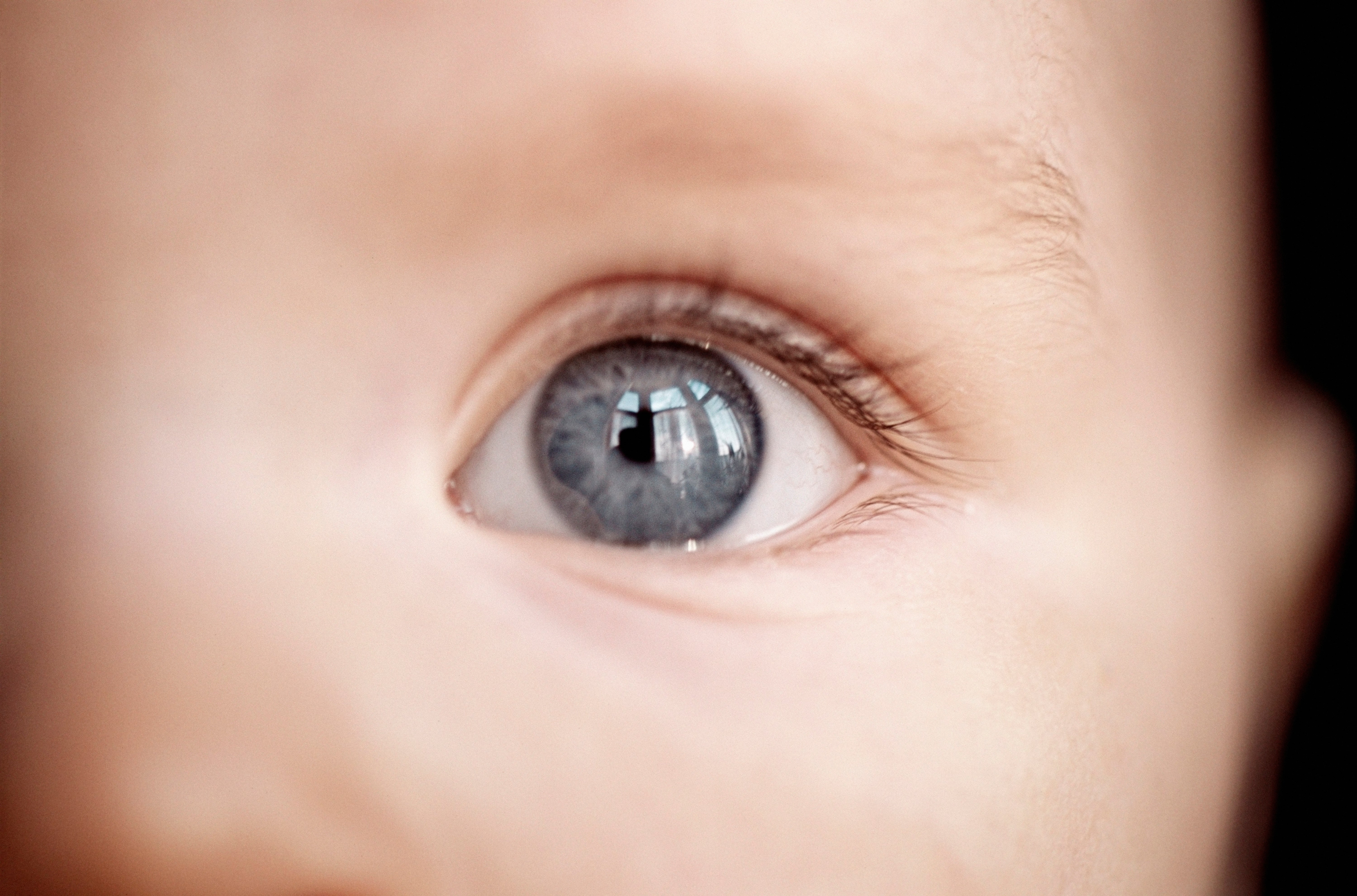 Born Ready: Babies Are Prewired to Perceive the World