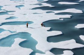 decrease in Arctic sea ice
