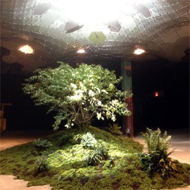 Tunnel Vision: Subterranean Park to Stay Sunny with Fiber-Optic Skylights [Slide Show]
