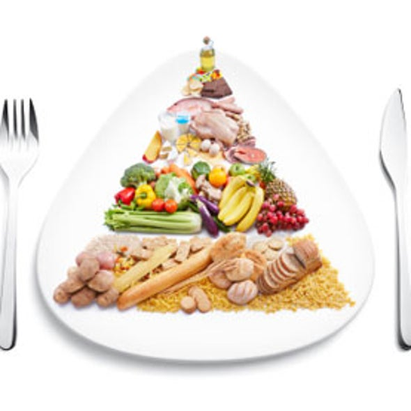 Pyramid versus Plate: What Should the USDA's Food Chart Look Like?