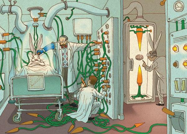 حفظ الدماغ هل يمكن ان تعيش ادمغتنا للأبد؟