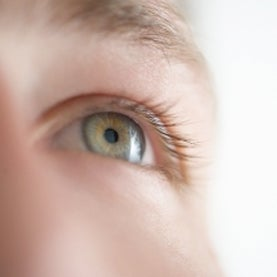 eye, stem cell, human eye, biotechnology