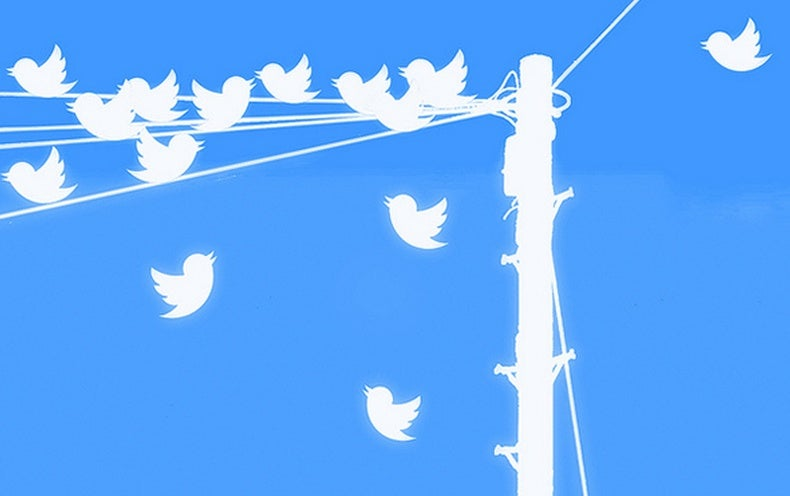 Trick of Tweet: Data Tool Pinpoints Words Seen as Credible