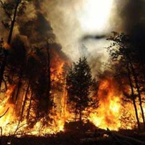 New Research Details Wise and Foolish Fire Activities throughout Human Evolution
