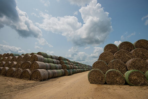 Advanced Biofuels Power Up Amid Resistance