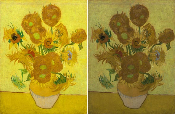 Unstable Dye Blamed for Van Gogh's Fading Sunflowers