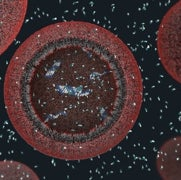 Origin of Life: First Cells May Have Been Glued Together