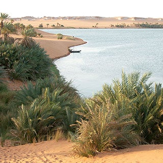 From Bountiful to Barren: Rainfall Decrease Left the Sahara Out to Dry