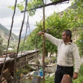 A farmer in the village of Bence