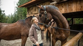 Horses Recognize Pics of Their Keepers