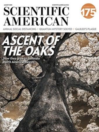 Scientific American Volume 323, Issue 2