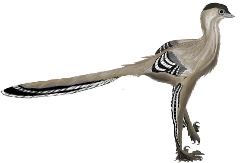 Dinosaurs Were Neither Warm-Blooded nor Cold-Blooded