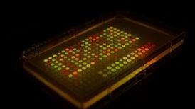 <i>E. Coli</i>-Mail: Microbial Messengers Used to Keep Secrets Safe