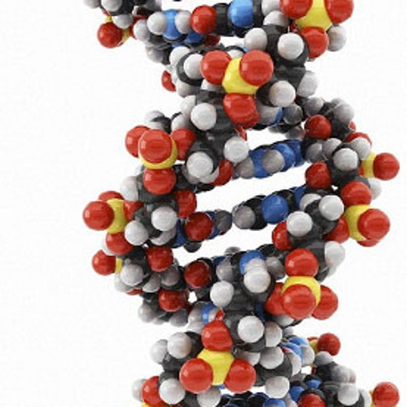 Unhidden Traits: Genomic Data Privacy Debates Heat Up
