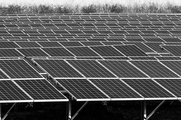 How to Support Renewable Energy (and Why You Really Should)