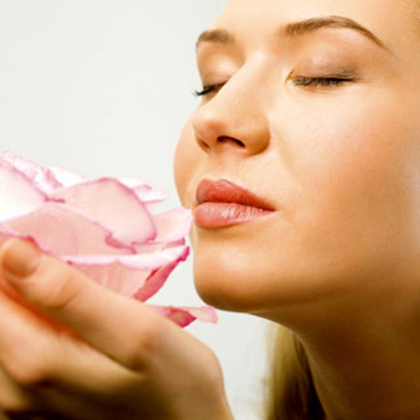 Do different cells in our nose respond to different smells?