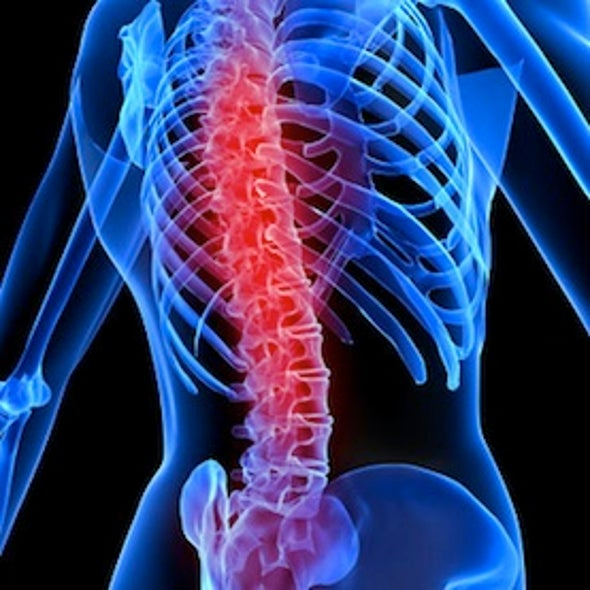 Rewiring a Damaged Spinal Cord [Video]