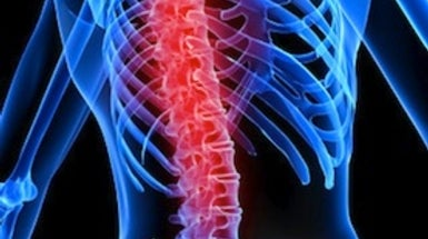 Rewiring a Damaged Spinal Cord [Video]