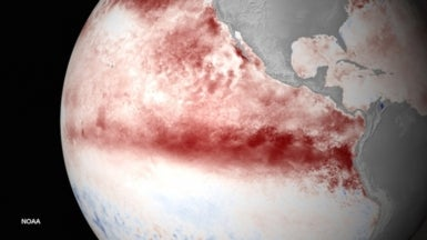 Current El Niño Could Be Strongest on Record
