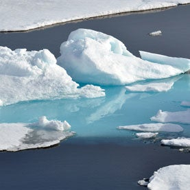 Cooler Year Fails to Shift Long-Term Trend of Arctic Sea Ice Melting