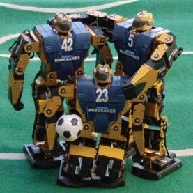 robo-soccer players