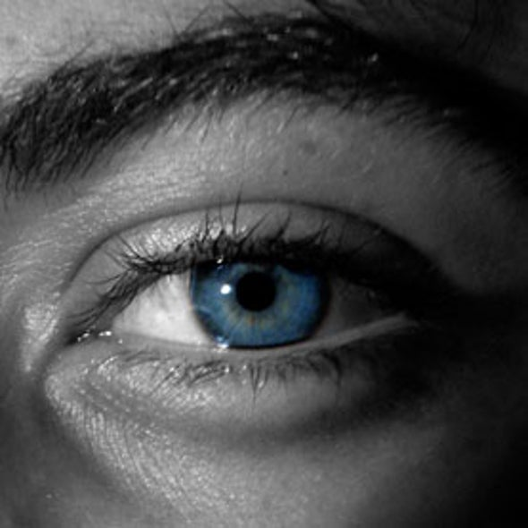 Eye-Tracking Software May Reveal Autism and other Brain Disorders