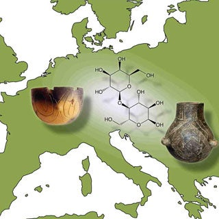 Did Lactose Tolerance First Evolve in Central, Rather Than Northern Europe?