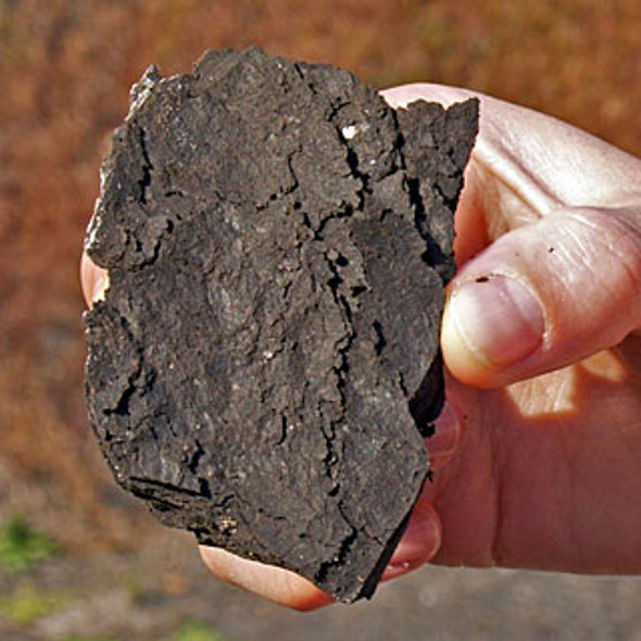 Can Oil Shale Be Used as a Power Source?