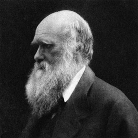 Time Line: Evolution Before and After Darwin