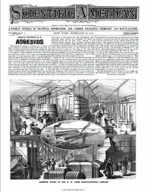 February 26, 1881